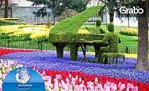В Истанбул за пролетния Фестивал на лалето! Екскурзия с 2 нощувки със закуски, плюс транспорт