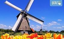Самолетна екскурзия до Амстердам през май и юни 3 нощувки в хотел 2* или 3*, самолетен билет с включени летищни такси и ръчен багаж!!