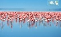 За 1 ден до природен резерват Лимни Керкини и Кукуш, Гърция! Транспорт, водач и програма от Дениз Травел!