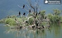 За 1 ден до природния резерват езерото Керкини за 19 лв.