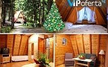 Еднодневен пакет за Коледа за до четирима души във вилно селище Малина, Боровец