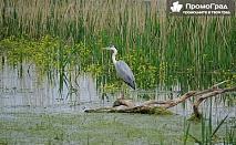 Еднодневна екскурзия до езерото Керкини и Килкис (Кукуш) осигурена от Galaxy SMS за 33 лв.