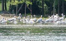 Еднодневна екскурзия до езерото Керкини, Гърция на 17 Август (Събота) само за 30 лв. с предложението на туристическа агенция Поход
