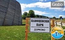 Еднодневна екскурзия до село Дорково, музея Плиоценски парк и крепостта Цепина на 29 Октомври