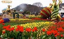 Екскурзия за Фестивала на лалетата до Истанбул, Турция! Транспорт + 2 нощувки на човек със закуски и посещение на Парк Емигрант и Одрин от Юбим Травел