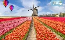Екскурзия през есента до Амстердам, Холандия! 3 нощувки със закуски, самолетен билет, ръчен багаж и медицинска застраховка
