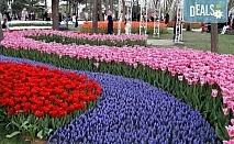 Екскурзия за Великден или през май до Истанбул с Еко Тур! 3 нощувки със закуски в хотел 3*, транспорт и екскурзовод