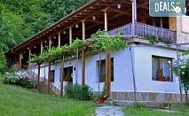 Есенна почивка сред природата! Нощувка със закуска, обяд и вечеря в Еко селище Синия вир, безплатно за дете до 6.99г.