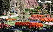 Фестивал на лалетата в Истанбул с посещение на Одрин (4 дни/2 нощувки със закуски в хотел 3*) за 119 лв.