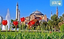 Фестивал на лалето в Истанбул през април! 2 нощувки и закуски в хотел 3*, транспорт от Плевен или София, посещение на парк Емирган