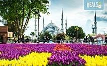 Фестивал на лалето в Истанбул, Турция! 2 нощувки със закуски в хотел 4* с ползване на сауна, турска баня и басейн, транспорт, посещение на Одрин и Чорлу!