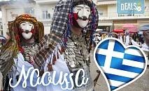 На карнавал в Науса, Гърция, през февруари! 1 нощувка със закуска и вечеря, транспорт, екскурзовод и посещение на Вергина и Солун