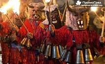 Карнавал в Струмица – Малкият Рио де Жанейро - еднодневна екскурзия за 34.50 лв.