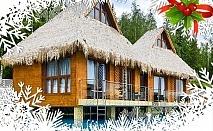Коледа в Сапарева баня! 3 или 4 нощувки на човек със закуски и вечери, едната празнична в Комплекс Бора Бора
