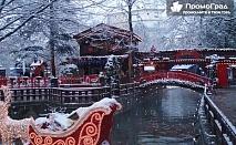 Коледна приказка в Драма с посещение на Коледния базар Онируполи - еднодневна екскурзия с Комфорт Травел за 33 лв.