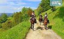 Конна езда и преход с коне в Родопите! 2 часа преход, видеозаснемане с екшън камера и безплатен басейн, от Ранчо