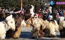 КУКЕРСКИ ФЕСТИВАЛ В БРЕЗНИК! Транспорт с лицензиран автобус, екскурзоводско обслужване, медицинска застраховка само за 14 лв!