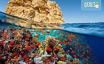 Last Minute! Нова година в Египет! 9 дни и 8 нощувки на база All Incluslive в Minamark Resort and SPA 4*, Хургада