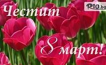 8-ми Март в Луковит! 2 нощувки със закуски, 1 BBQ вечеря и 1 Празнична + СПА, от Хотел Дипломат парк