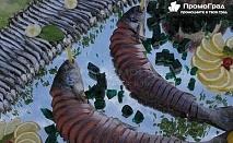 Миден и рибен фест – Каварна 2017 + посещение на ботаническата градина, мидената къща и Аладжа манастир за 39 лв.
