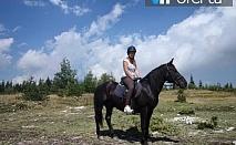 50% намаление на два часа конен поход за начинаещи с инструктор в Родопите на 30 минути от Пловдив в Конна база Стела