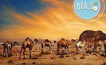 Ноември, Йордания, Аман и Петра: 5 нощувки със закуски, вечери, самолетен билет и такси