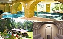 Нощувка на човек със закуска и вечеря + релакс зона и басейн в хотел Бор, Семково