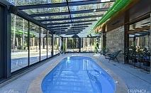 Нощувка със закуска на човек + басейн с подсолена вода и СПА в Семеен Хотел 103 Алпин, Паничище