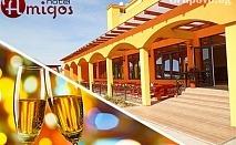 Нова Година в Луковит на ТОП цена. 2 или 3 нощувки, закуски, вечери, едната празнична с богато меню и DJ парти в Хотел Амигос