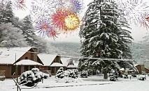 Нова Година в Рибарица! 2 или 3 нощувки на човек със закуски и вечери, едната Новогодишна в Комплекс Green Village