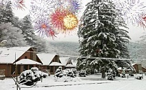 Нова Година в Рибарица! 2 или 3 нощувки със закуски и вечери, едната Новогодишна от хотелски комплекс Green Village