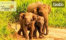 Новогодишна екскурзия до Шри Ланка! 7 нощувки със закуски и вечери, една от които празнична, плюс самолетен билет