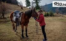 Почивка в Родопите! Нощувка със закуска и вечеря + 2 часа преход с кон /по желание/, от Ранчо Диви Родопи