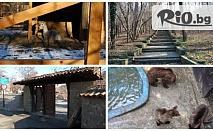 Полудневна екскурзия до Зоопарка в Айтос само 13лв, с включена входна такса и организиран транспорт, от ТА Виватурс БГ