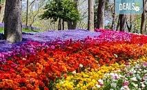 Посетете прелестния Фестивал на лалето през пролетта в Истанбул! 3 нощувки със закуски в хотел 3*, транспорт и посещение на Одрин