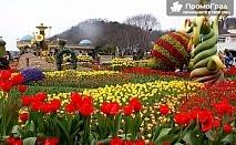 През април до Истанбул за Фестивала на лалето и Великден + посещение на Одрин (4 дни/3 нощувки, 3 закуски) за 212 лв.