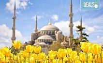 Ранни записвания само до 29.11.! Екскурзия до Истанбул за Фестивала на лалето с 2 нощувки и закуски, транспорт и трансфер до Емирган парк!