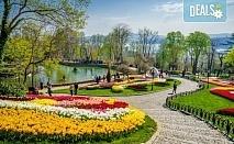 Ранни записвания за Фестивал на лалето в Истанбул! 2 нощувки със закуски в Golden Tulip Istanbul Bayrampasa 5*, транспорт, ползване на закрит басейн и сауна!