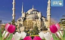 Ранни записвания за Фестивал на лалето в Истанбул! 3 нощувки със закуски, транспорт и бонус: посещение на Одрин