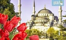 Ранни записвания за Фестивала на лалето в Истанбул на дата по избор през април! 2 нощувки със закуски, транспорт и водач