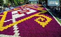 Ранни записвания за Фестивала на лалето в Истанбул с АБВ Травелс! Програма с 3 нощувки със закуски и транспорт, пешеходен тур и посещение на Одрин!