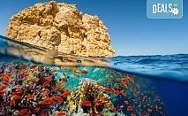 Ранни записвания за незабравима екскурзия в Египет през пролетта! 4 нощувки на база All Inclusive в Хургада, 3 нощувки на база FB на круизен кораб 5*, самолетен билет, летищни такси, трансфери и богата програма