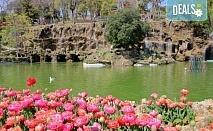 Ранни записвания за прелестния Фестивал на лалето в Истанбул през април! 2 нощувки и закуски в хотел 4*, транспорт и посещение на Одрин
