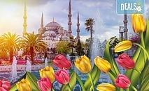 Ранни записвания за разкошния Фестивал на лалето в Истанбул през пролетта! 2 нощувки със закуски, транспорт и посещение на Одрин