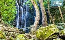 Разходка за 1 ден до Македония с посещение на Дойранското езеро, Струмица и Пехчевския водопад - транспорт и водач от Еко Тур!