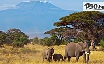 Разходка до Кения! 6 нощувки, 6 закуски, 5 обяда, 6 вечери в хотели 4/5*, двупосочни самолетни билети, летищни такси, трансфери и сафари, от Никона Травел
