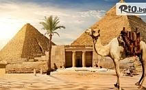 Самолетна екскурзия до Египет! 7 нощувки на база All Inclusive в Хотел SUNNY DAYS PALMA DE MIRETTE 4*, двупосочен билет + такси и трансфери, от Aqua Tour