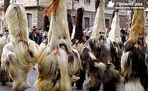 Сурва в Перник - Международен фестивал на маскарадните игри (еднодневна) за 16 лв.