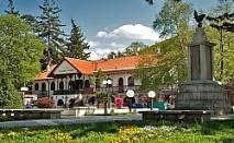 Уикенд в Сокобаня, Сърбия, с Джуанна Травел! 1 нощувка във VIlla Palma със закуска, обяд и вечеря с жива музика и неограничени напитки, транспорт и водач!