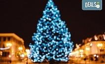 """Усетете магията на Коледа с еднодневна екскурзия до Драма и Коледният базар """"Онируполи""""! Транспорт застраховка, водач и програма, от Комфорт Травел"""